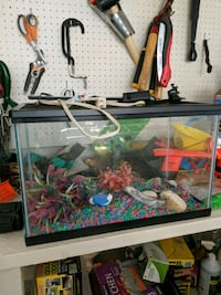 Fish tank fishtank, 10 gallon Ashburn, 20147