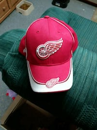 Hat Redford Charter Township, 48239