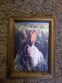 painting of brown hare with brown wooden frame Abilene, 79605