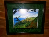 Gorgeous picture FRAMED from HAWAII Jensen Beach, 34957