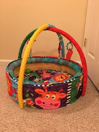 baby's multicolored activity gym Greenbelt, 20770
