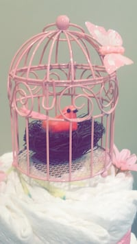 Baby girl diaper cake with pretty birdcage theme! Mississauga, L5B 3N3