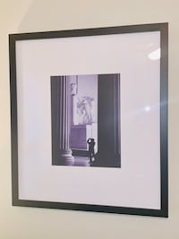 5 24x26 Black and White photos of DC, professionally framed Sterling, 20166