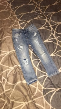 blue denim straight cut jeans New York, 11435