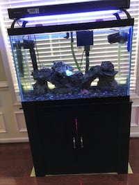 60 Gallon Saltwater Tank with Stand Gainesville
