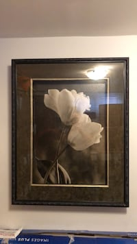 White magnolia flowers framed painting 540 km