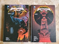 due libri DC Batman e Robin