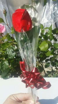 Rose en pierre   Paris, 75001