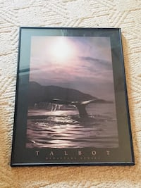 Framed Talbot or orca print Medicine Hat, T1C 1X2