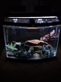 Custom 26 Gallon Bow Front Aquarium Kit CENTREVILLE