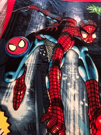 Spider-Man blanket and frisbee