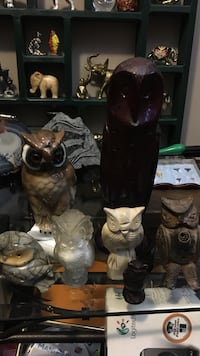 Owl collection  Calgary, T2Y