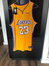 Gold Lebron James Jersey Washington, 20002
