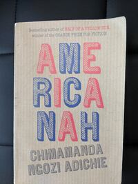 Bestselling Book: Americanah by Chimananda Ngozi A