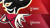 Calgary Flames Tickets Cheap (Tonight) Calgary, T2X 3B3
