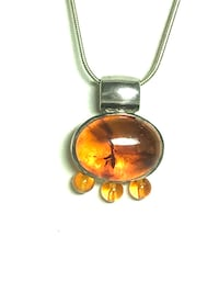 Baltic Amber Necklace Moorpark, 93021