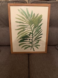 white and green leaf plant painting Apex, 27502