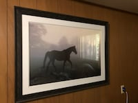 "Horse Picture 33""x44"" Damascus, 97089"