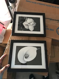 Black and white pictures  Virginia Beach, 23462
