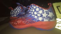 Autographed hot sauce basketball shoes  Odessa, 79761