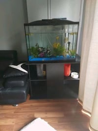 Aquarium with stand Mississauga