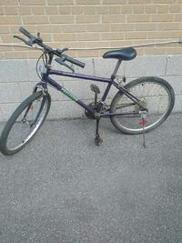 $60 for 24 inch bike   Ontario, M9W 2A3