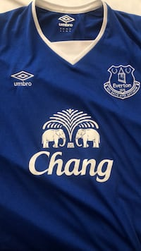 Jagielka Everton Jersey XL (tight fit) Alexandria, 22311