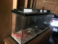 100 gallon tank with metal stand