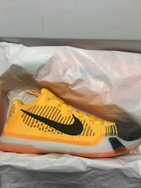 "Kobe 10 ""Chester Cheetah"" Burnaby, V5E 2N5"