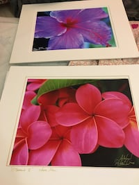 Two 8x10 floral wall art photographs Alexandria, 22306