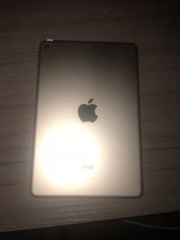iPad mini 4  Columbia