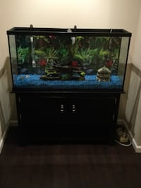 75 gallon fish tank Dumfries