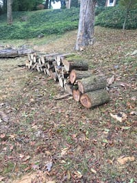 FREE CUT FIREWOOD Knoxville