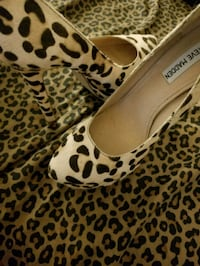 pair of brown leopard print platform stilettos Washington, 20001