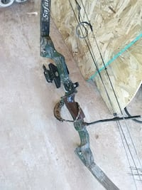 black and green compound bow Alexandria, 71303