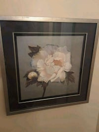 white peony flower framed painting Brampton, L7A 1R9