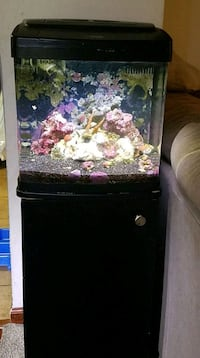 fish tank Altoona, 16601