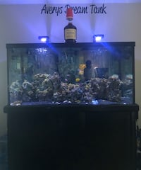 Fish tank for sell *OBO*