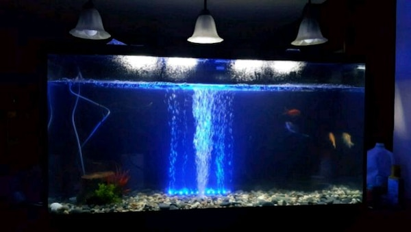 65 gallon xtra tall aquarium fish tank with stand
