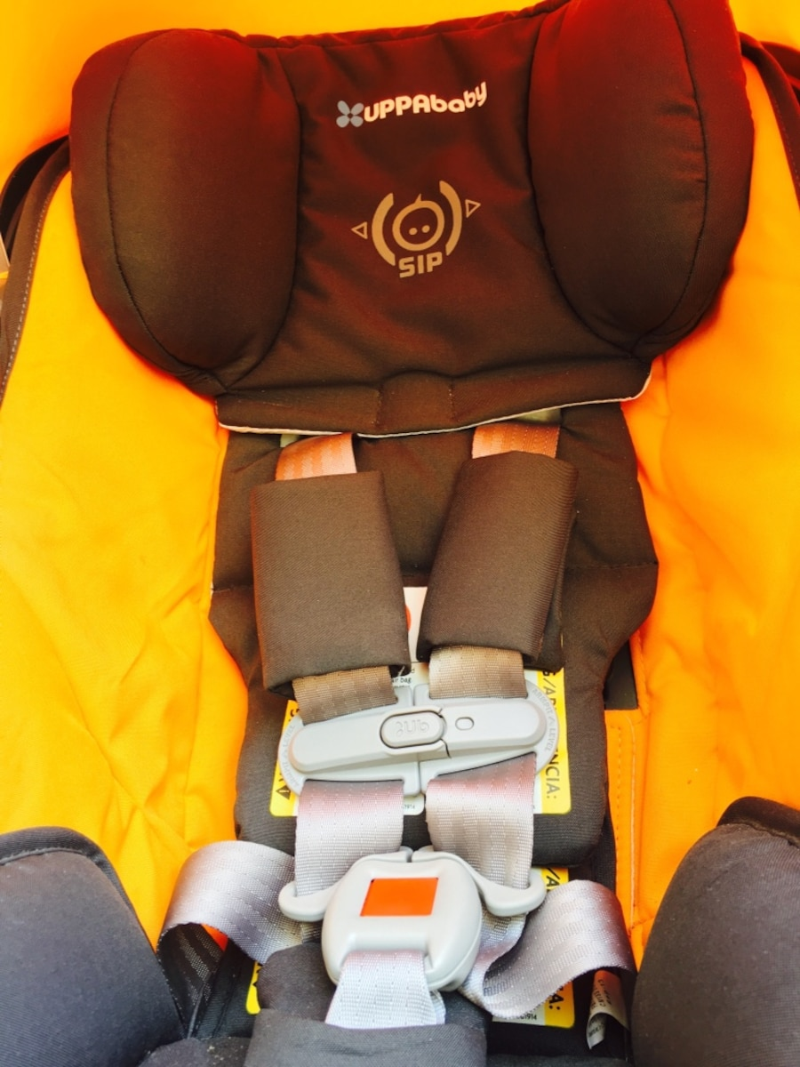 New York Law  Month Baby Car Seat