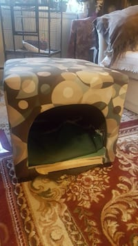Cat home  West Springfield, 01089