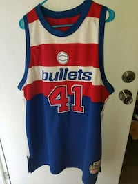 Mitchell and Ness throwback Unseld Bullets jersey  Auburn, 36832