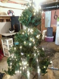 6ft Christmas tree with lights Frackville, 17931