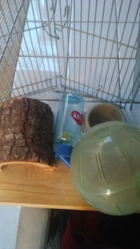 Pet cage with extras