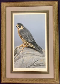"""Original """"Back From the Verge of Extinction"""" Print By D. Nicholson Miller"""