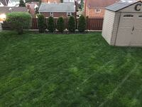 Lawn mowing Pittsburgh