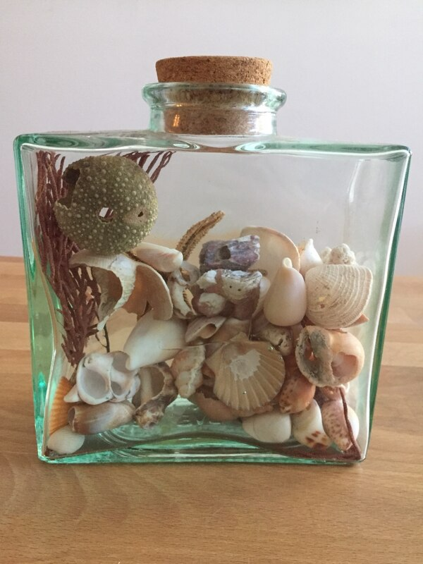 Used Decorative Glass Jar Filled With Shells For Sale In New York