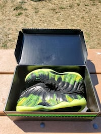 Air Penny Paranormans size 10 Deadstock Burnaby, V5E 3S7