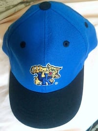 blue and green Toronto Blue Jays fitted cap Naples, 34102