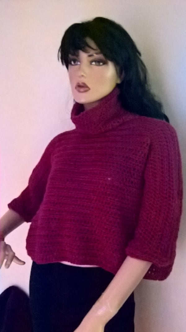 Cropped turtle neck sweater  1